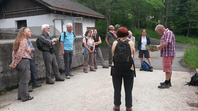 2017 Orchideenexkursion im Alpthal