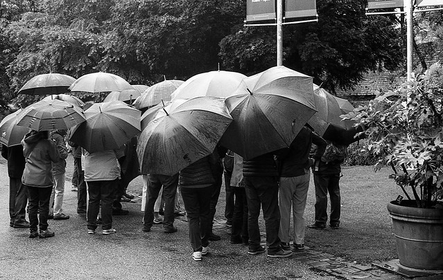 FILM - Umbrellas