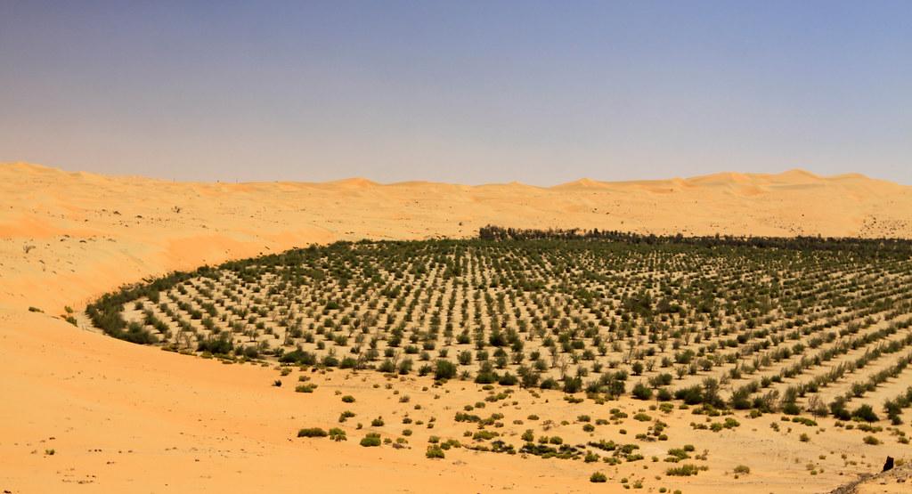 Rub' al Khali (or the Empty Quarter) | Desert reforestation … | Flickr