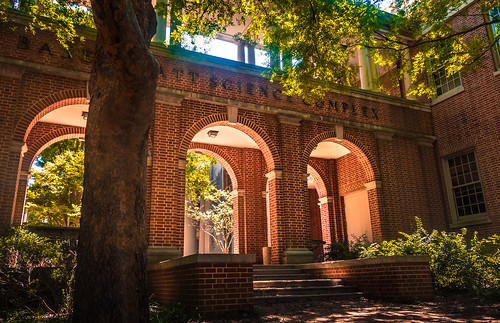 america unitedstates usa us travel college campus davidson arch way bright golden brick red yellow green tree leaves leaf sky ground path bricks building old majestic writing engraving undergraduate landscape