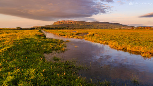 sunset sunsetting goldenhour goldenlight roeestuary riverroe roeestuarynaturereserve sunlight sunlit binevenagh binevenaghmountain benevenagh benevenaghmountain grass gully water waterscape clouds cloudysky reflections reflected hightide springtide myroe limavdy northernireland ulster canon5dmkiii canon canonef24105mmf4lisusm leefilters warmlight reflectionsinwater