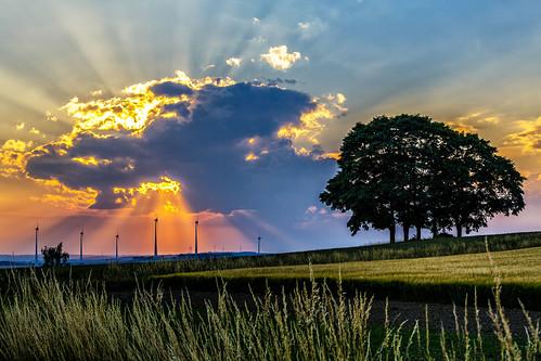 landscape germany raitschin hof trees sunset clouds wind turbines
