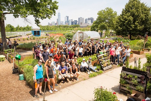 Governors Island Teaching Garden | GrowNYC