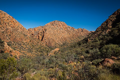 Larapinta Trail Day 1-6