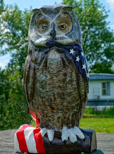 coxsackieny coxsackie greenecounty fiberglasspublicart publicart owl hootoftheowl whatahoot