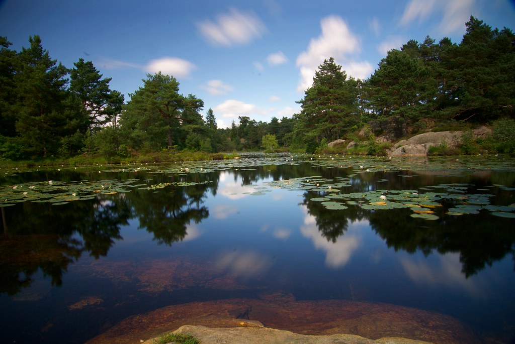 Kristiansand, Norway   Baneheia   Daud Vasiq   Flickr