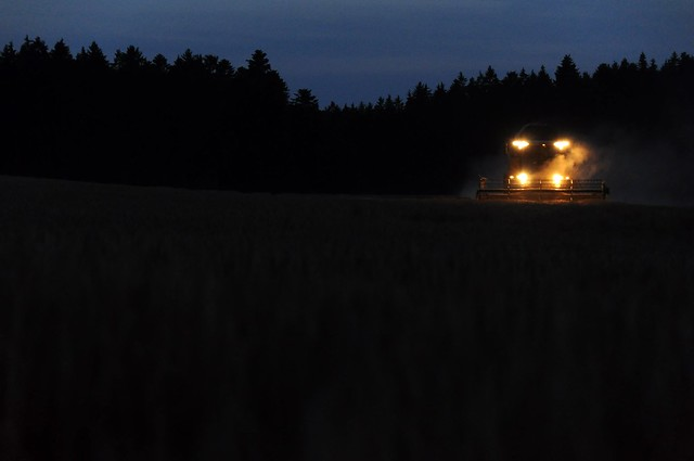 Harvesting at night - panorama