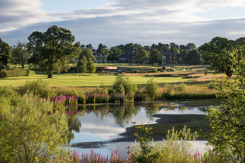 2017 golf landscape rockliffehall daltonontees england unitedkingdom gb
