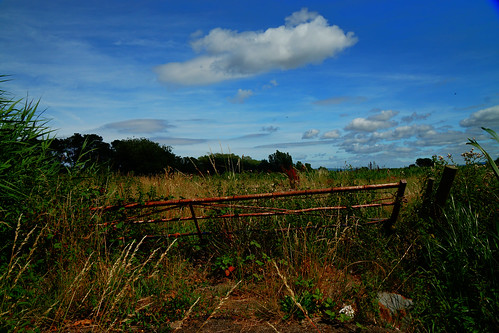 minehead somerset england uk sony a6000 outdoors gate rusty field grass sky clouds blue green yellow nature weeds plants color landscape britain