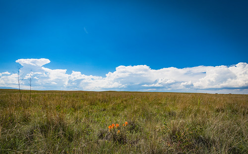 lightning storms stormclouds clouds plains colorado