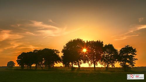 onlanden sunset evening avond bomen trees netherlands canonnederland natuurmonumenten drenthe landschap landscape zonsondergang