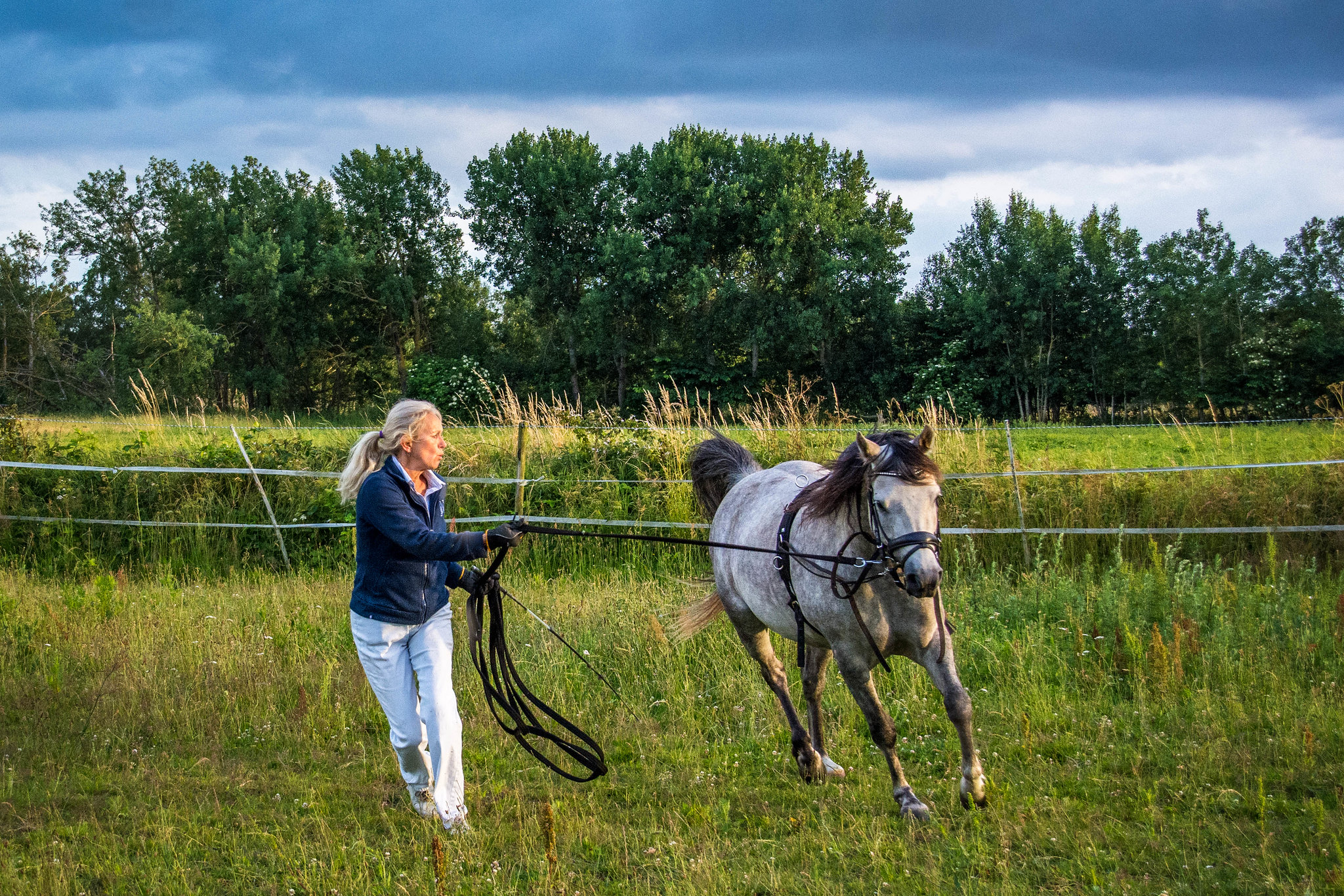 20170704 Pony training