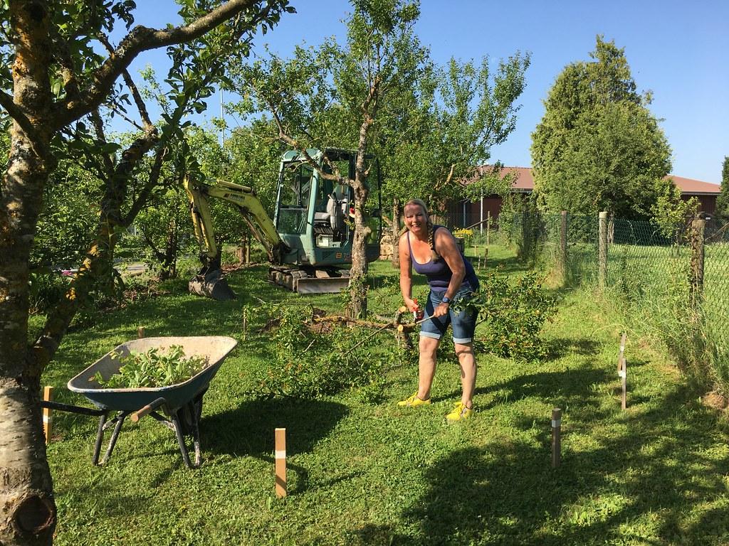 Projekt Wasser im Garten