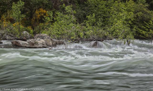 Swollen river - possilby Coyote Creek