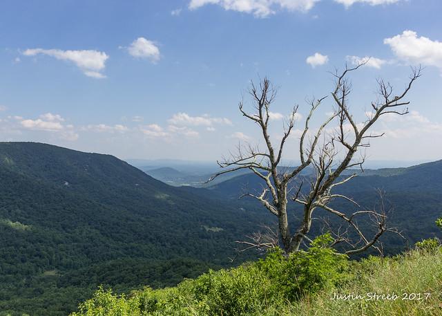 Shenandoah National Park '17