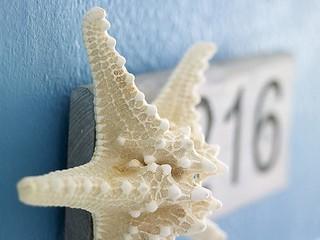 Kythnos-Bay-Hotel-Kythnos-Greece-Cyclades-Starfish-room-decoration-design-minimalism-modern-summer-summertime-Kythnos-Bay-Hotel-Kythnos-Greece-Cyclades | by medusarestautant
