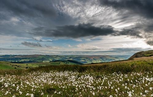 cottongrass higgertor hathersage derbyshire clouds glowering darkclouds