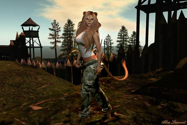 Lioness at FF Altamura Chaddul Ro