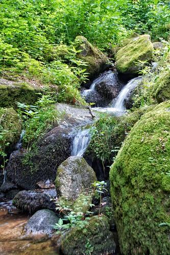 Sasbachwalden Black Forest