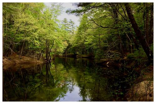blackwaterriver slow reflection woods trail bridgeabutments salisbury nh webster warner iphone crossing