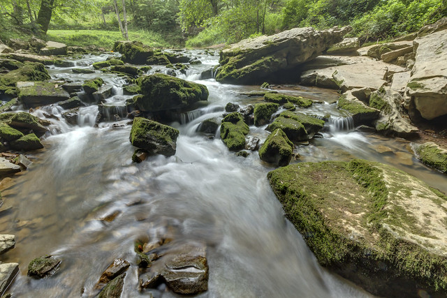 Unnamed creek, Kentucky 1