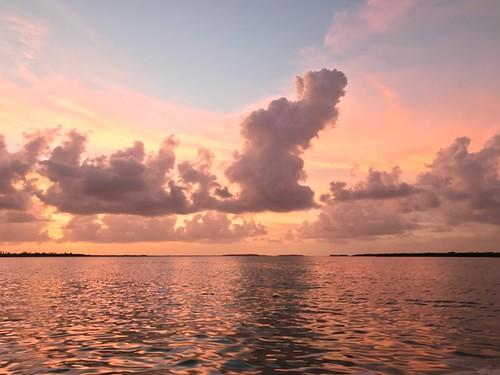 eyeemselects sunset scenics sky beautyinnature tranquility nature tranquilscene water outdoors horizonoverwater florida