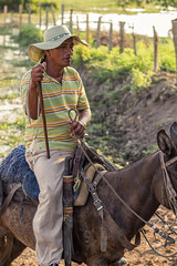 Cowboy on Horse, Magdalena Colombia