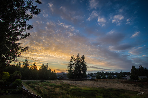 sony sonya7m2 a7m2 sunset summer millbay millbaybc cowichanvalley cowichan cobblehill bc britishcolumbia vancouverisland canada field clouds cloud tree trees evening