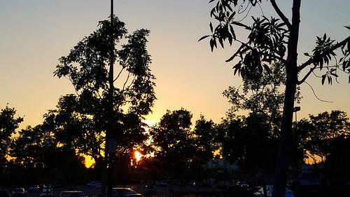 ranchosantamargarita california photo digital summer sunset trees