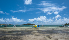 Caribbean Bay Life