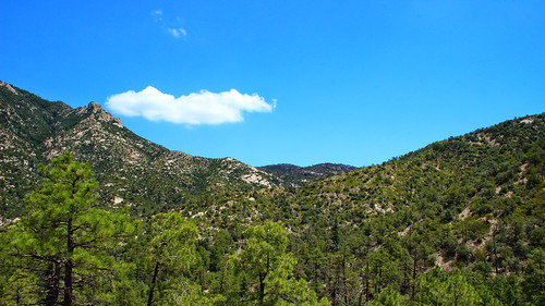 Mt Lemmon Bug Springs trail | by phl_with_a_camera1