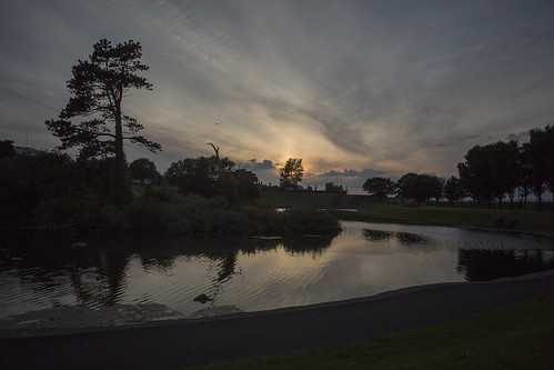 evening reflection blackrock park pond silhouettes water sunset