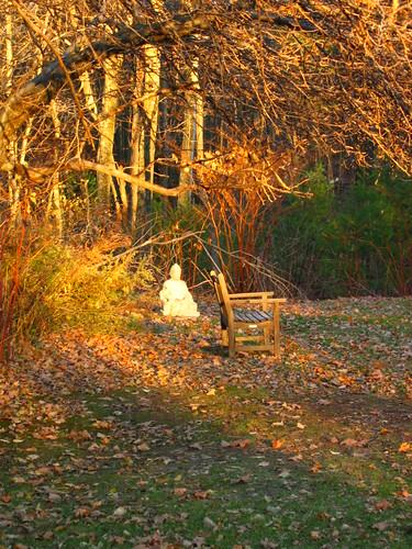 trees sunset statue garden bench 1 buddha ims