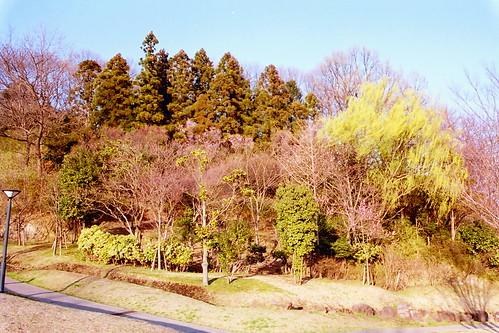 Narayama Park
