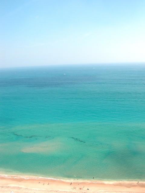 Water Color, Shark (Art) School, Sea Signs For Sail - IMRAN™ — 2300+ Views!