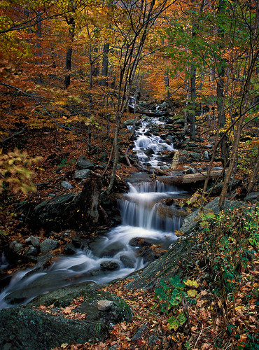 fall leafpeeping creek vermont smugglersnotch film saveme6 deleteme10