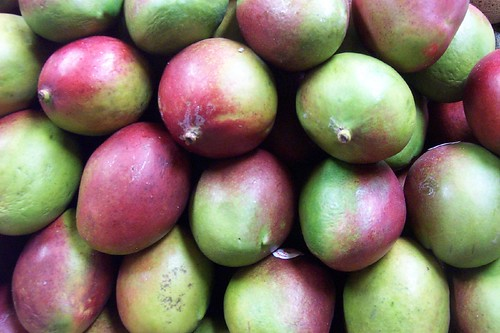 mangoes | by Julep67