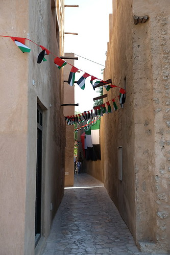 UAE Flags in Old Town Dubai | by f_greiner