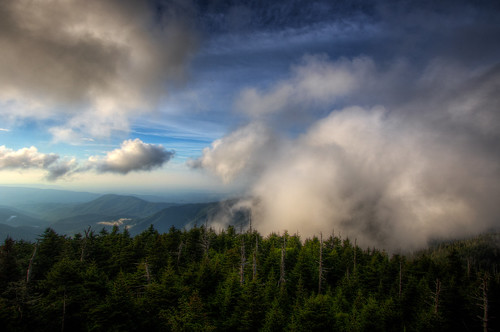smokymountainsnationalpark clingmansdome hike clouds fog trees outdoors landscape