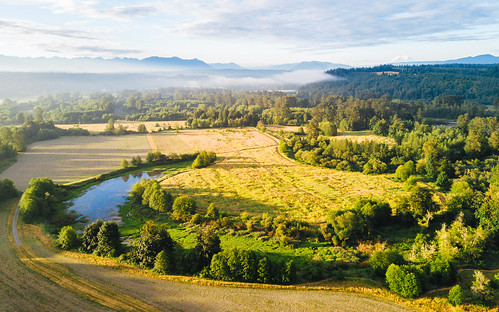 carnation washington unitedstates us djimavicpro dronephotography aerial nature landscape foggy river farmland rural johnwestrock