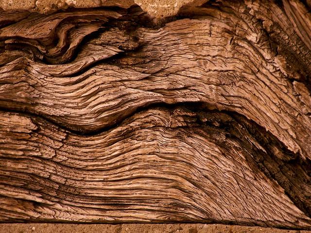 Wood Waves II