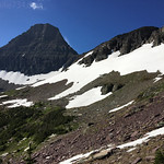 Snowfields along route to Mt. Reynolds