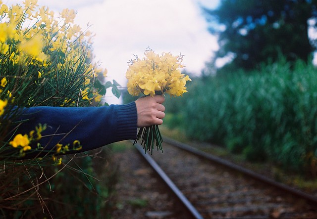Retamas bouquet.