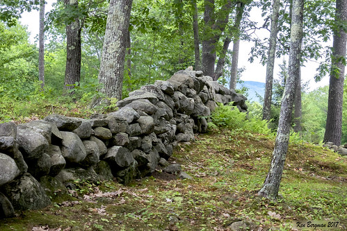 stone wall stonewall woods landscape rural newhampshire marlborough