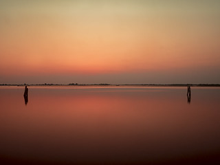 Paired | by Riccardo Palazzani - Italy