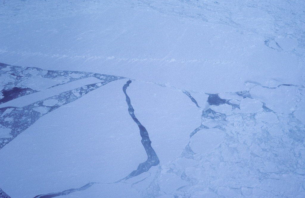 Arctic pack ice in the Gulf of St Lawrence as seen from a  helicopter that we used to go out onto the ice floes.