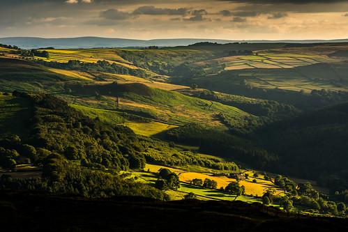 derwentvalley derbyshire evening fields sunset