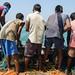 Chapora Fishing Trip 2017