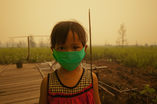Child with a mask | by CIFOR