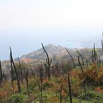 Gasperina vista dalle pendici del Monte Paladino